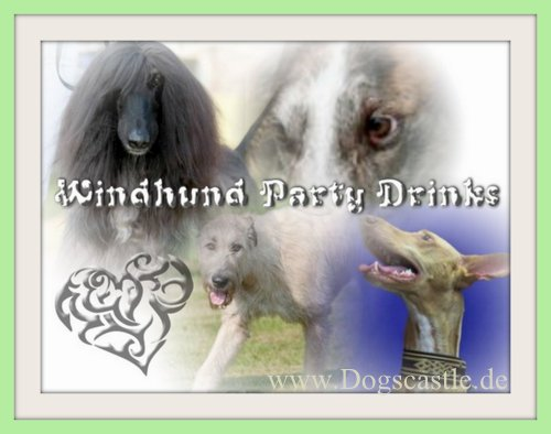 Windhund Party Drinks